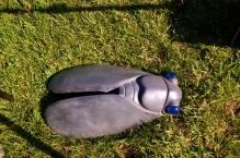 Bijou de jardin cigale, béton fibré, Vanina Mercury